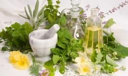 Resep Obat Kencing Manis Tradisional